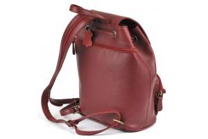 Beasty Mini BP Burgundy Leather
