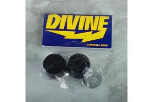 Divine DownHill Bushings